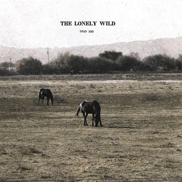 Dead End EP CD by The Lonely Wild for sale on hellomerch.com