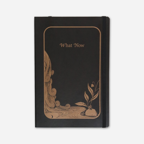 What Now Journal by Patty Griffin for sale on hellomerch.com