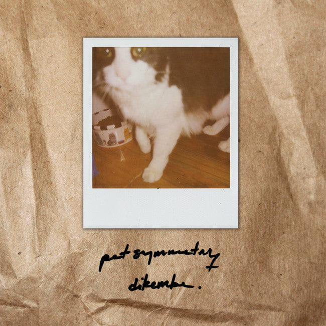 "Pet Symmetry / Dikembe Split 7"" Cream Vinyl"