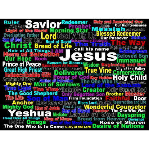 "100 Names of Jesus (for Christmas) Canvas Gallery Board Wrap 20"" x 30"""