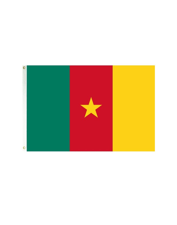 Cameroon 3x5 Polyester Flag