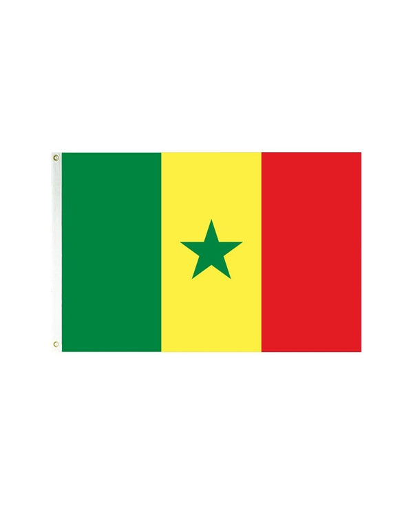 Senegal 3x5 Polyester Flag