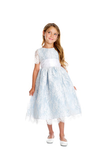 Special Occasion French Lace Dress