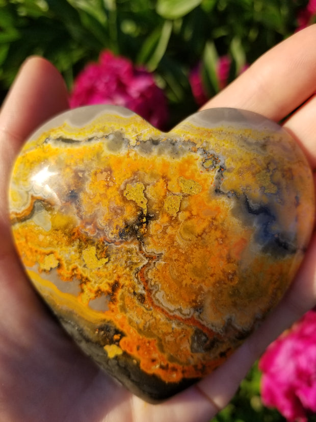 Large Bumble Bee Jasper Hearts 80mm