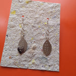 Load image into Gallery viewer, Cacao Pod Earrings