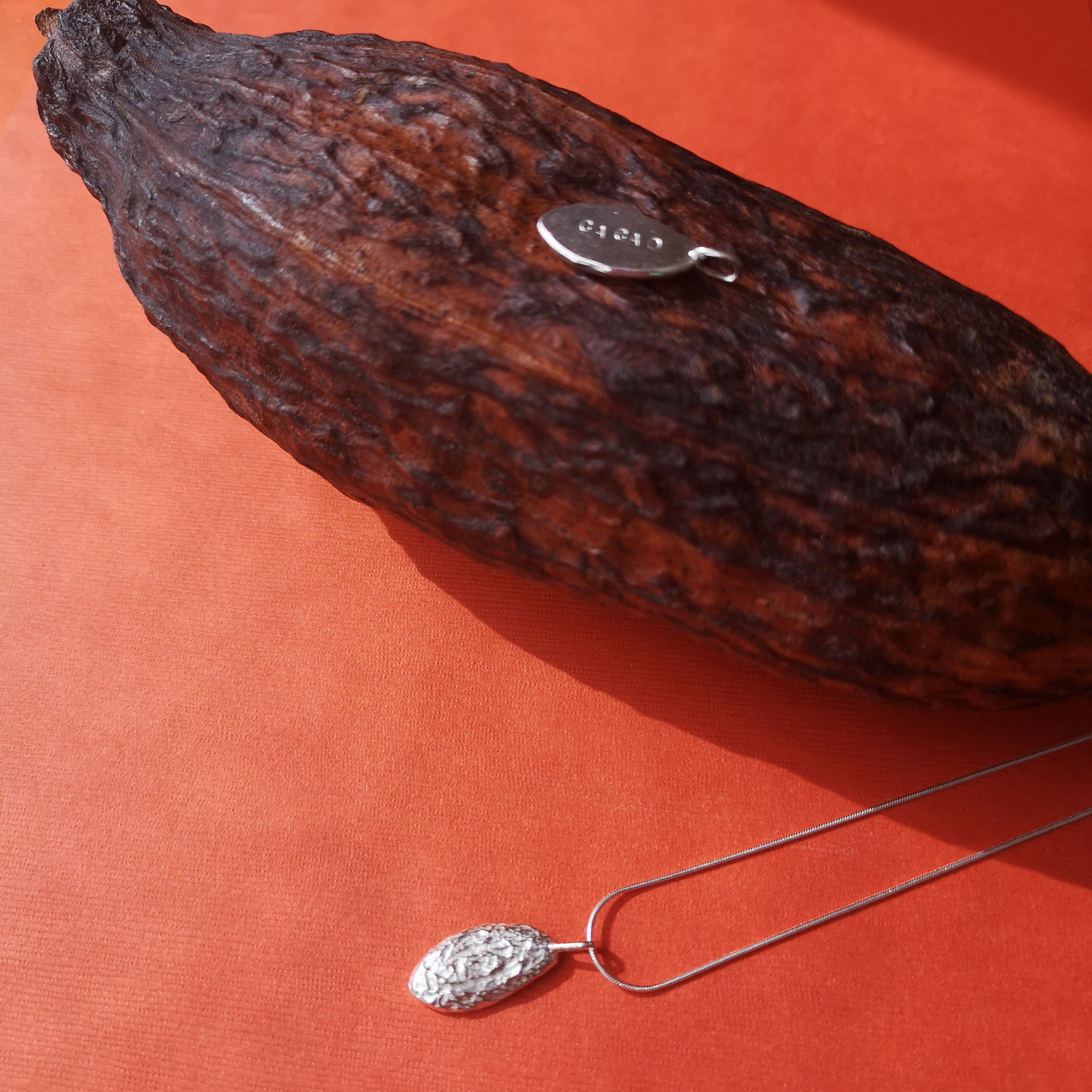 Cacao pod necklace show with a dried cacao pod