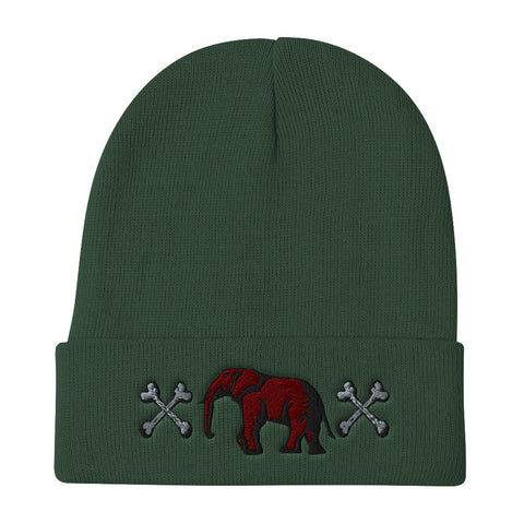 Victorious UJL  Beanie