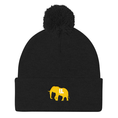 The GOLD STANDARD Pom Pom Knit Cap