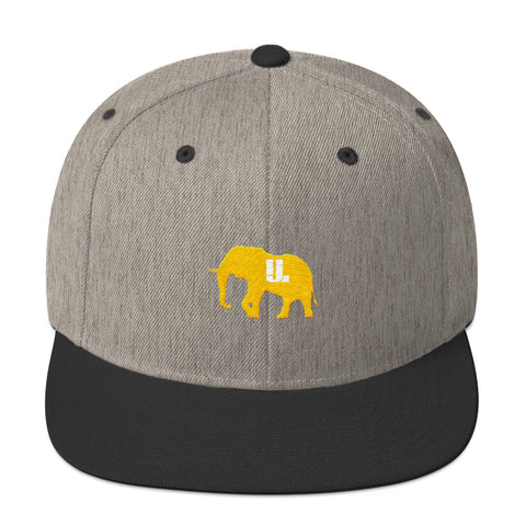 The GOLD STANDARD snapback