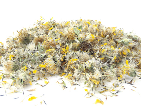 Arnica Flowers - Dried Flowers Market