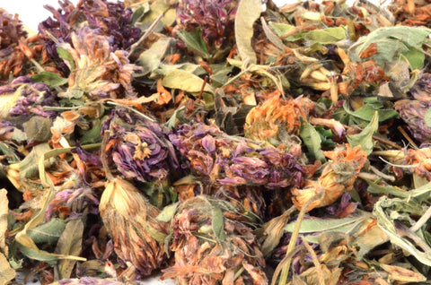 Red Clover - Dried Flowers Market