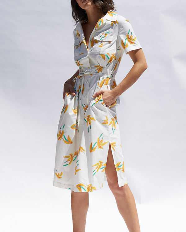Valeria Cotton Shirt Dress - Painted Floral