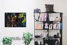 Charger l'image dans la galerie, Green potted plant on white ceramic vase - W-Photographie