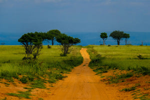 Dirt Road - W-Photographie