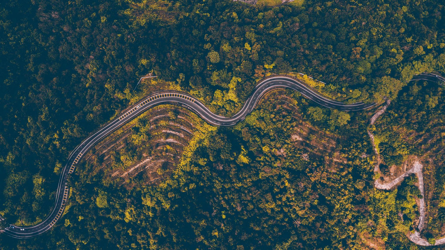 Aerial Photography of road besides forest - W-Photographie