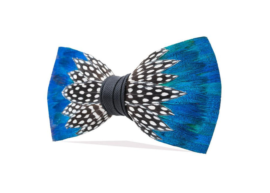 Durham Bow Tie - Guineafowl & Peacock Feathers