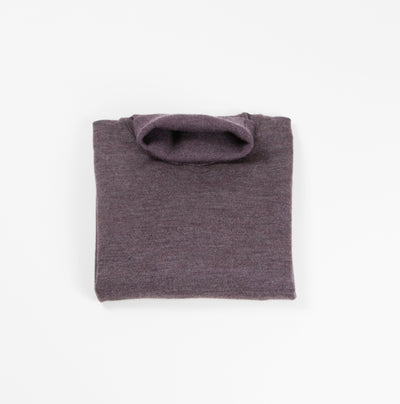 Saturn Wool-Blend Turtleneck - Wine