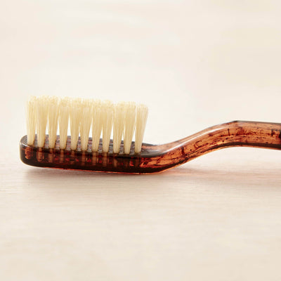 C.O. Bigelow Natural Bristle Toothbrush