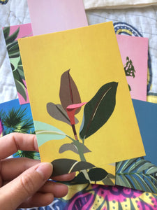 Plant Postcard Packs