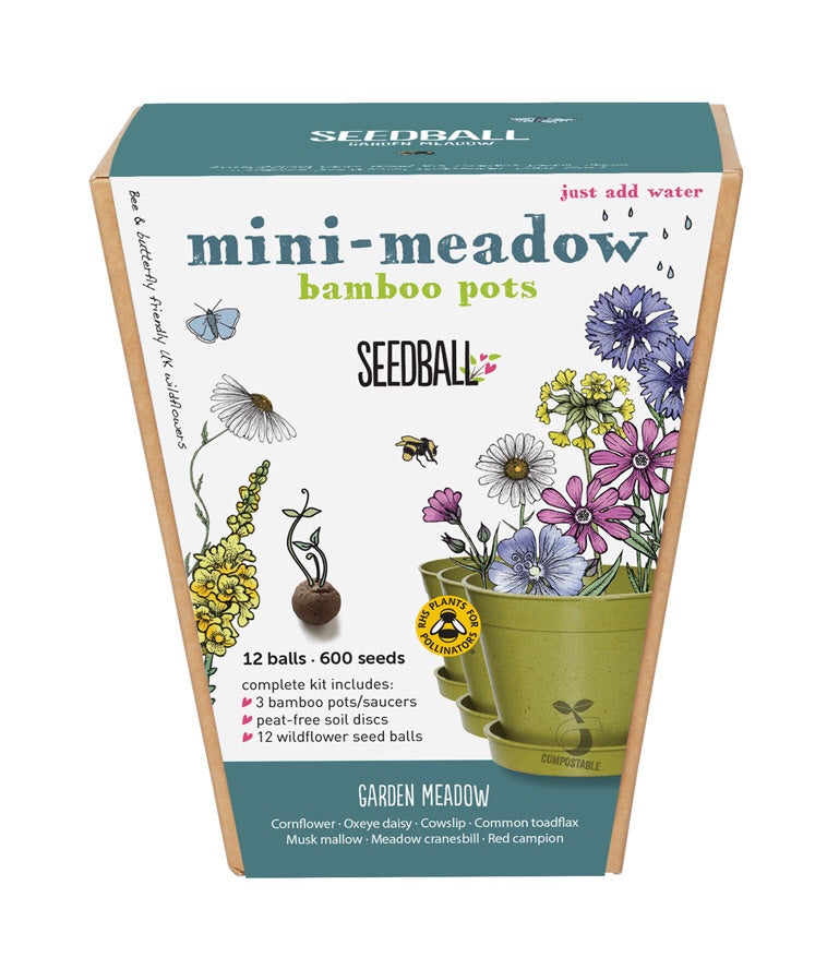 Mini Meadow Bamboo Pots
