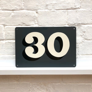 Painted house number workshop - an introduction to sign writing, Thursday, 16th January