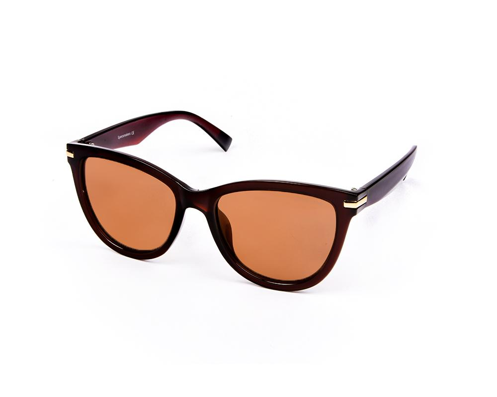 RECTANGLE BROWN SHINE WITH BROWN SUNGLASS SOG929