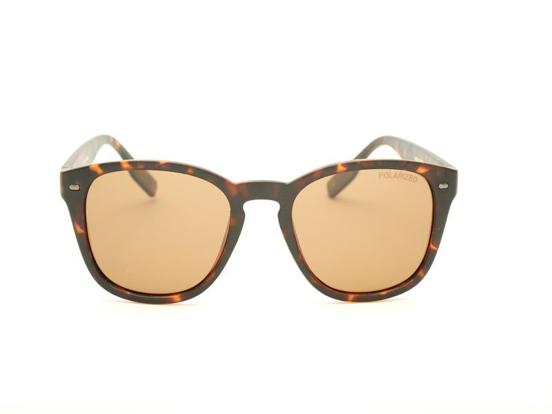 RECTANGLE SHELL SUNGLASS 6006 - Specsmakers