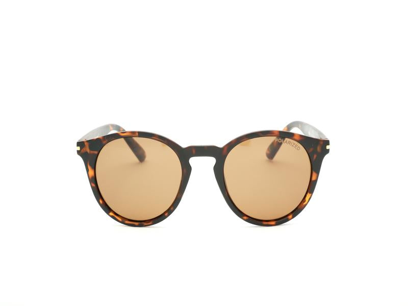 ROUND SHELL SUNGLASS 6055 - Specsmakers