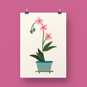 'Pink Orchid' Art Print