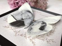 Close up of silk Memory Butterfly, image of a young couple on their wedding day from approx 1940's