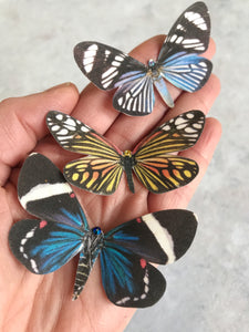 Silk Butterfly Hair Clips - Set of 3 stripes