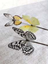 Set of Three Silk Butterfly Hair Pins - Yellow and Black