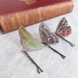 Set of Three Silk Moth Hair Pins - Moon, Tiger and Cecropia