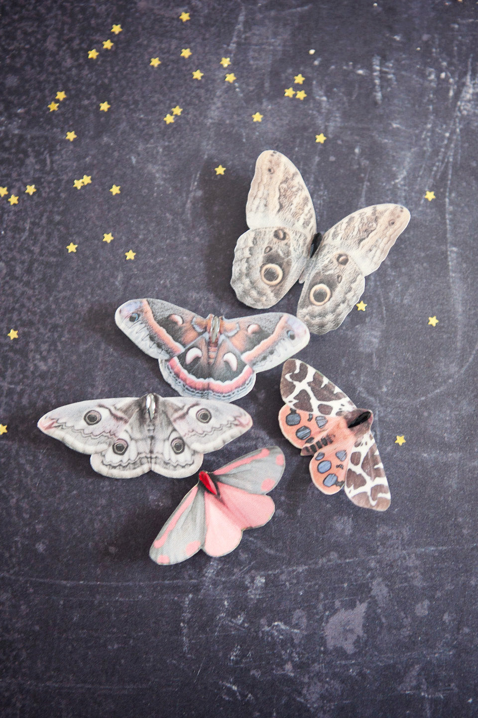 A set of five silk moth hair clips on a black background with tiny golden stars