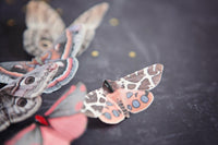 A close up image of a Tiger Moth silk hair clip with Swarovski Crystal by Flutter Designs