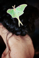 A model with a braided hairstyle models a hand made silk Luna Moth hair clip by Flutter Designs.