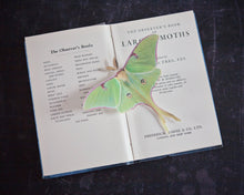 A single Luna Moth hair clip on an observers Moths of the UK vintage pocket book