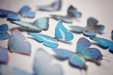 Blue handmade silk butterfly hair clips by Flutter Designs