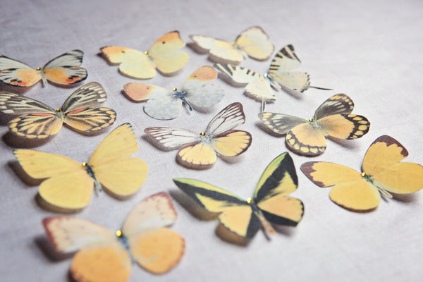 Silk Butterfly Hair Clips - Set of 7