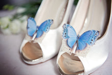 Flutter Designs something blue silk shoe clips