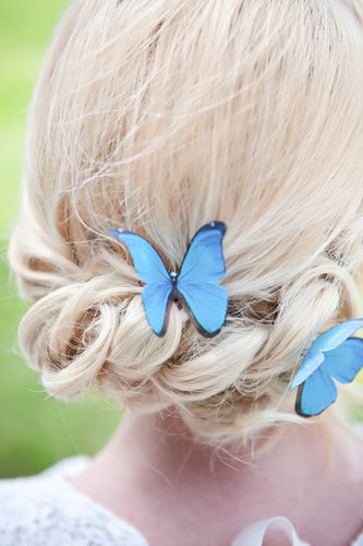 Blue Morpho silk Butterfly Hair Pin