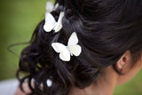 Bride wears a trio of ivory sparkles hair pins