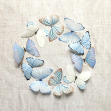 Pale blue silk butterfly embellishments by Flutter Designs