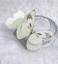 Silk Butterfly hair comb - Ivory and cream