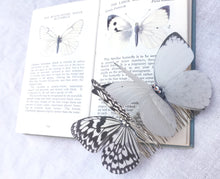 Silk Butterfly hair comb - Monochrome