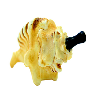 shell pipe seapipe hippie gift shell pipe tiny home gift