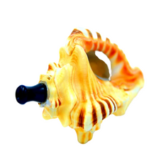 seapipe shell pipe sea pipe in weed bus hippie box