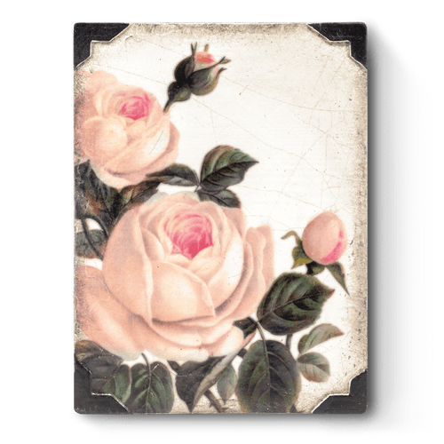 Sid Dickens Memory Block -  T464 Gentle Rose
