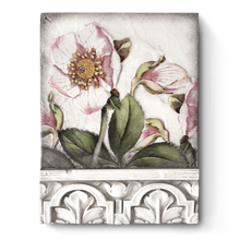 Load image into Gallery viewer, Sid Dickens Memory Block- T501 Hellebores