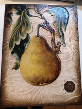 Load image into Gallery viewer, Sid Dickens Memory Block - Pear - RLE 1804